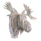 Tête Élan en Carton Recyclé New York- Taille M - CARDBOARD SAFARI