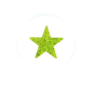 Tableau végétal Micro Picto MAGNET Etoile diam 10cm - FLOWERBOX
