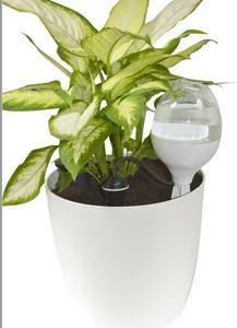 Reserve Decorative 70cl Blanc