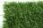 Haie Alpha 147 brins verts 100% occultant 1M X 3M