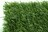 Haie Alpha 147 brins verts 100% occultant 1.2M X 3M